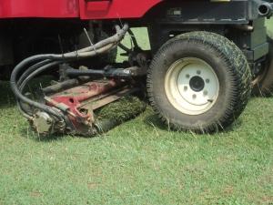 mow lovegrass 2