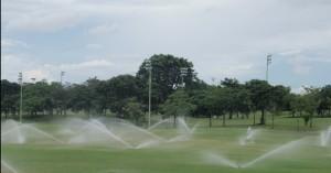 Sprinkler irrigation in a golf course