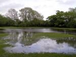 File pic: Flooded field.  Gambar hiasan.