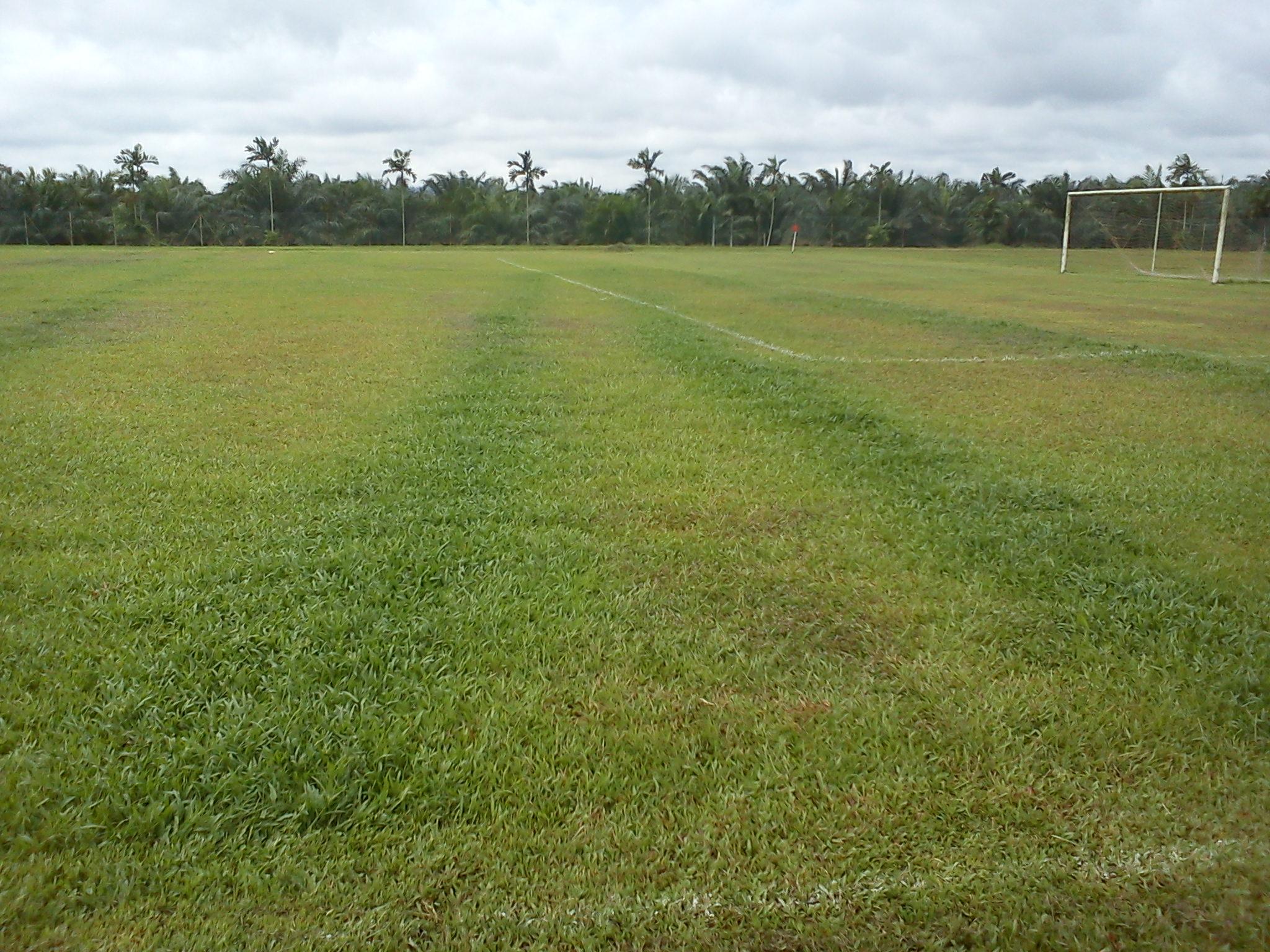 uneven fertilize baja (2)