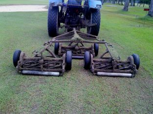 tractor reel mower (2)