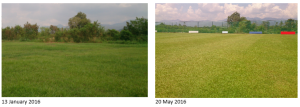 Before and after centre field