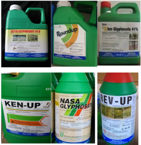 sample of glyphosate