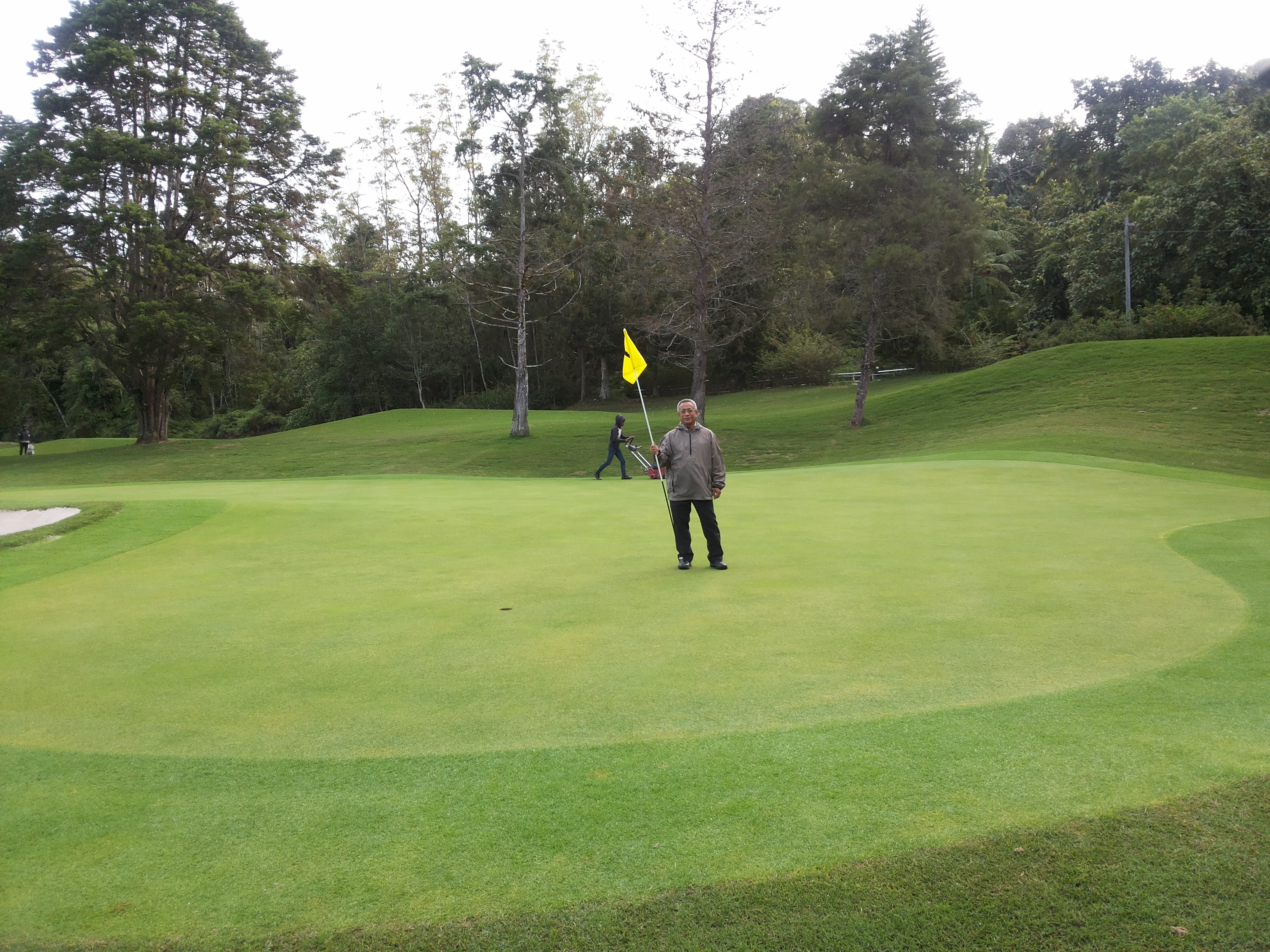 me normas on Bentgrass green (2)