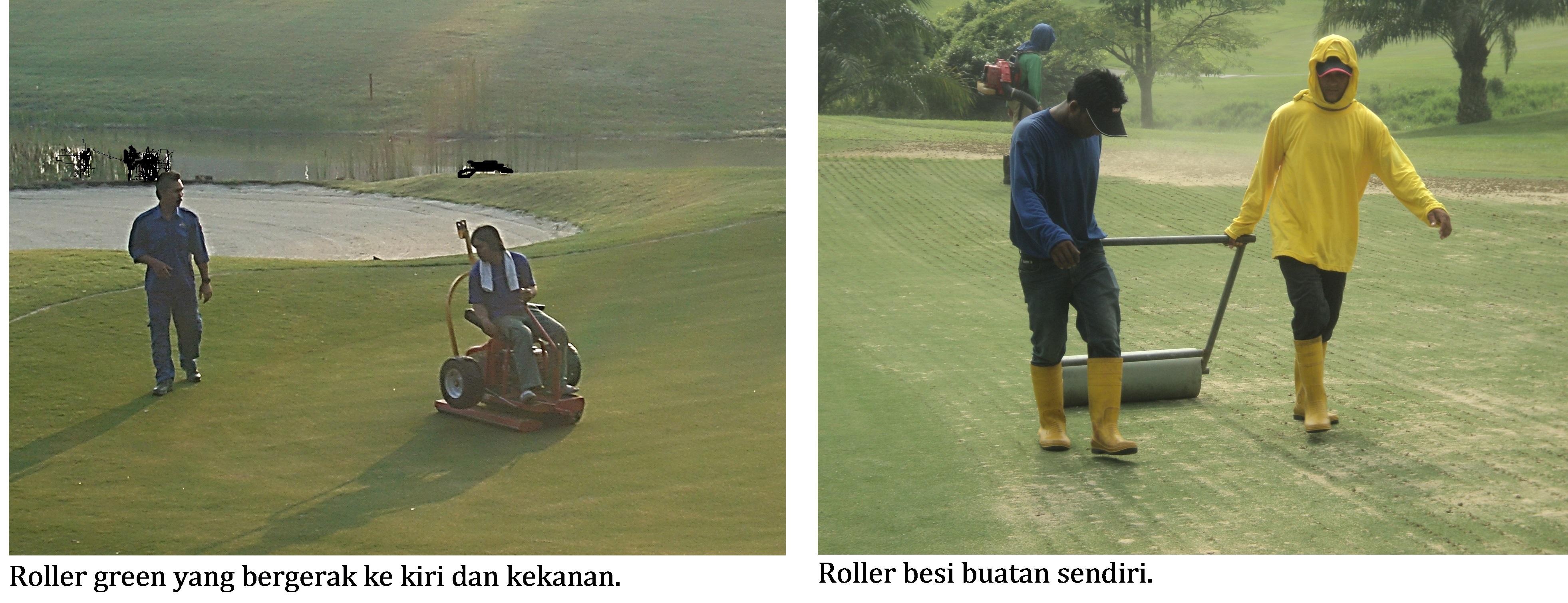 roller green