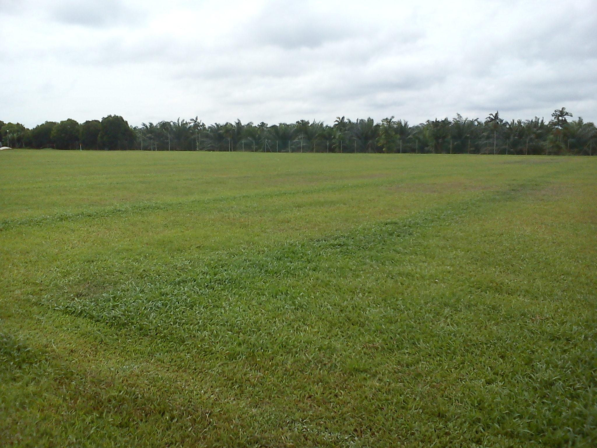 uneven fertilize baja (3)