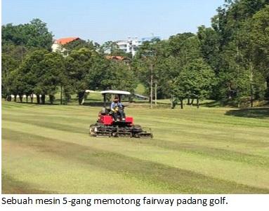 5 gang fairway
