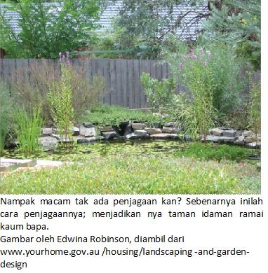 landscape natural 1