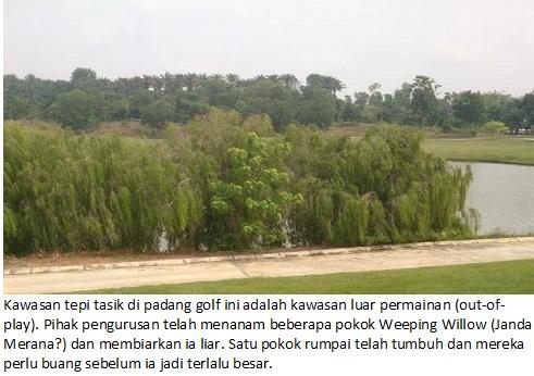 pemulihan ekologi 1