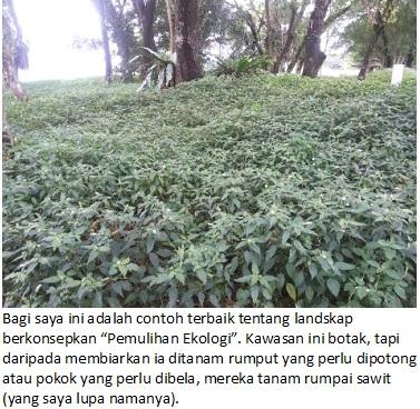 pemulihan ekologi 2