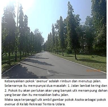 landscape avenue